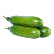 Salatalık (kg)