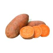 Tatlı Patates (Kg)