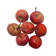 Japon Elması (500 Gr)