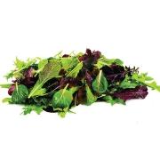 Maskolin Salatası (Paket)