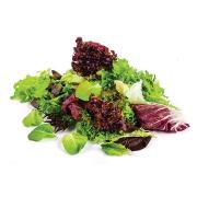 Akdeniz Salatası (Paket)