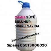 CAMIZ SÜTÜ ŞOKLANMIŞ 5 L