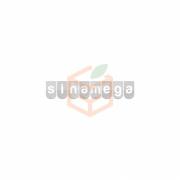 Dimes Mango 1lt -12`li Koli