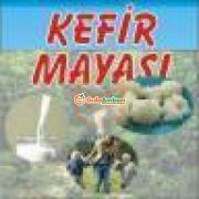 Kefir Mayası