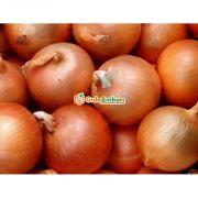 Bursa Karacabey Soğanı