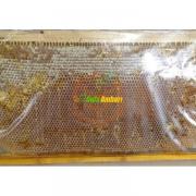 Erzincan Doğal Petek Balı Özel Üretim Yatla Balı