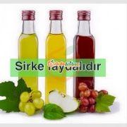 Elma Sirkesi
