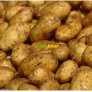 Yemelik Patates