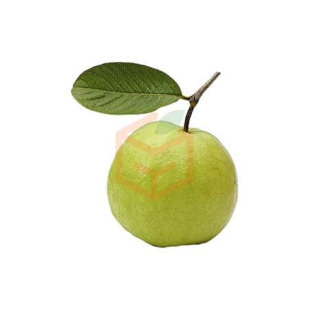 Guava (500 Gr) | Gıda Ambarı