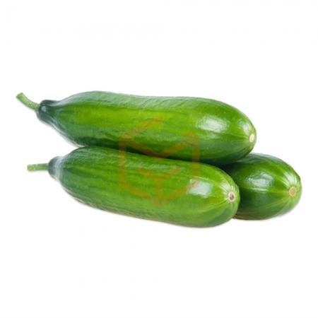 Salatalık (Kg) | Gıda Ambarı