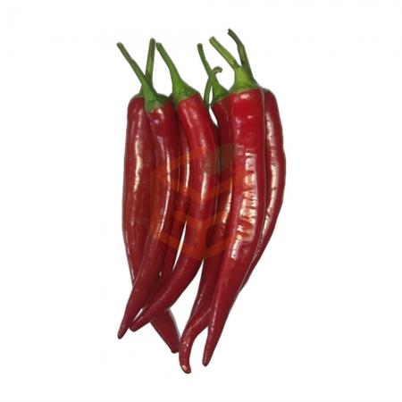 Samandağ Kırmızı Biber (500 Gr)  | Gıda Ambarı