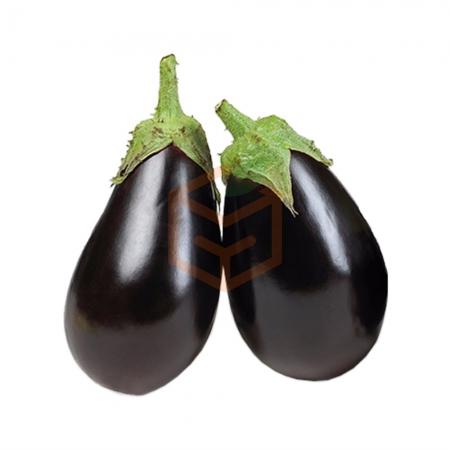 Bostan Patlıcan (kg)  | Gıda Ambarı
