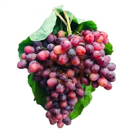 Çekirdeksiz Kırmızı Üzüm (Kg) | Gıda Ambarı