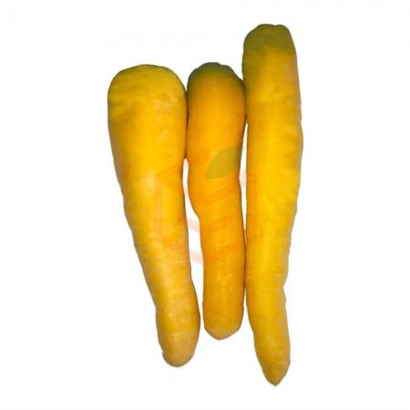 Sarı Havuç (Kg) | Gıda Ambarı