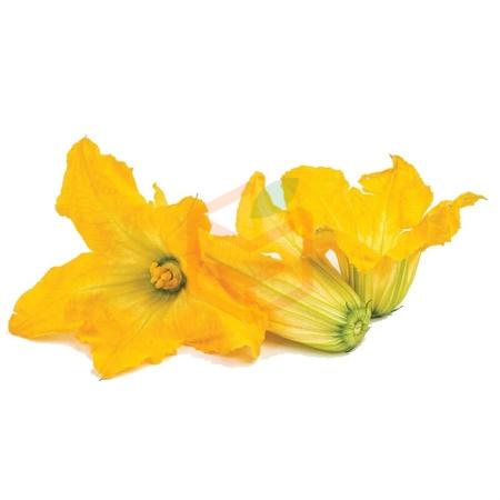 Kabak Çiçeği (paket )    Gıda Ambarı