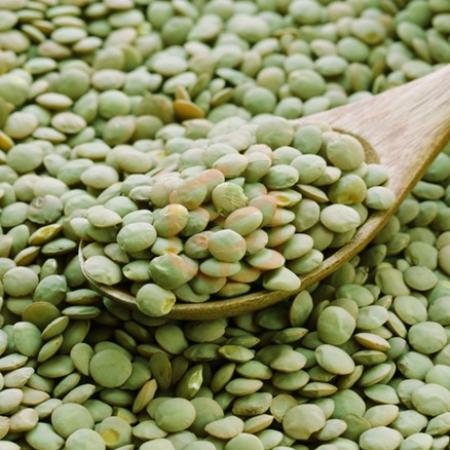 Yozgat Yeşil Mercimeği | Gıda Ambarı