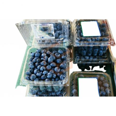Namsal Yaban Mersini (blueberry) Kaseli 2.5 Kg (min. 2.5 Kg)  | Gıda Ambarı