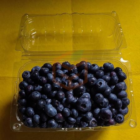 Yaban Mersini | Gıda Ambarı