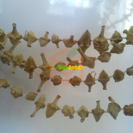 Kuru Çiçek Bamya 500Gr Toptan&Perakende - Sebze ve Meyve - Sebze - Bamya -