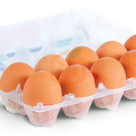 10' lu Yumurta | Gıda Ambarı
