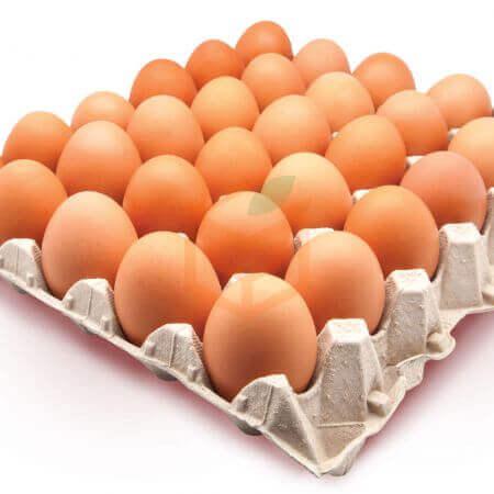 30' lu Yumurta | Gıda Ambarı