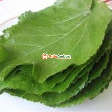 Organik Asma Yaprağı | Gıda Ambarı